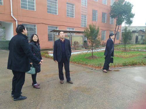调查组一行在东郊长丰中学察看校园建设情况_副本.jpg