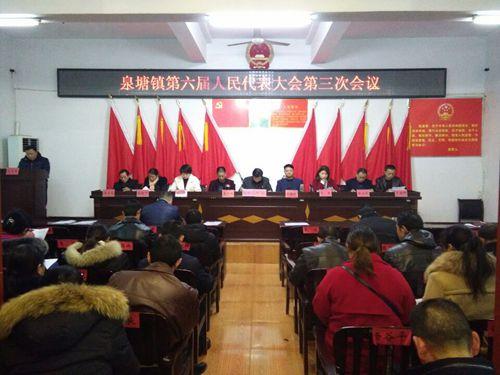 泉塘镇第六届人大代表大会第三次会议现场_副本.jpg